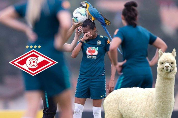 Момент из матча женской сборной Бразилии
