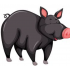 Swinsi