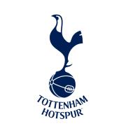 Логотип футбольный клуб Тоттенхэм (до 19) (Лондон)