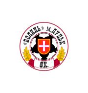 Логотип футбольный клуб Волынь (Луцк)