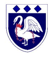 Логотип футбольный клуб Бернхэм