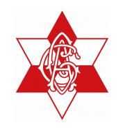 Логотип футбольный клуб Грацер