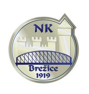 Логотип футбольный клуб Брежице