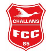 Логотип футбольный клуб Шалан