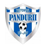 Логотип футбольный клуб АКС Вииторул (Петрошани)