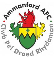 Логотип футбольный клуб Амманфорд