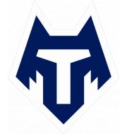 Логотип футбольный клуб Тамбов