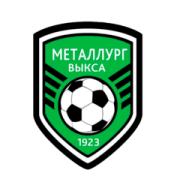 Логотип футбольный клуб Металлург (Выкса)