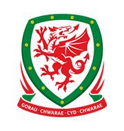 Логотип футбольный клуб Уэльс