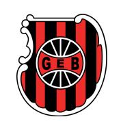 Логотип футбольный клуб Бразил де Пелотас