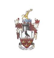 Логотип футбольный клуб Брентвуд Таун