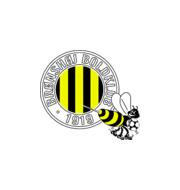Логотип футбольный клуб Бронсхой