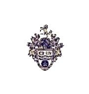 Логотип футбольный клуб Крей Уондерерс (Лондон)