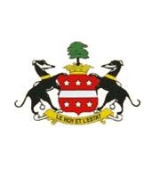 Логотип футбольный клуб Нидхэм Маркет ФК