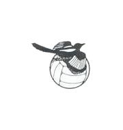 Логотип футбольный клуб Уимборн Таун (Уимборн Минстер)