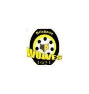 Логотип футбольный клуб ВДСК Вулвз