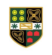 Логотип футбольный клуб Йет Таун