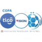 Парагвай. Примера дивизион сезон 2021