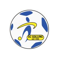 Футбольный клуб Голлинг состав игроков