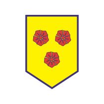 Футбольный клуб «Тре Фиори» (Фьерентино) результаты игр