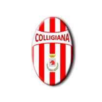 Футбольный клуб «Коллиджиана» (Колле-ди-Валь-д'Эльса) состав игроков