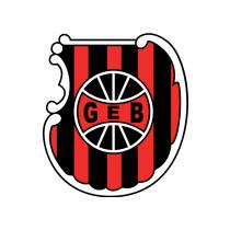 Футбольный клуб Бразил де Пелотас состав игроков