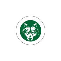 Логотип футбольный клуб Пешина