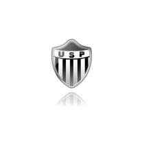 Футбольный клуб «Пьянезе» состав игроков